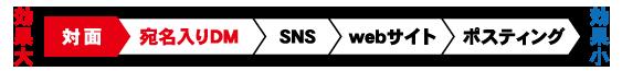宛名入りDM,SNS,WEBサイト,ポスティング,効果